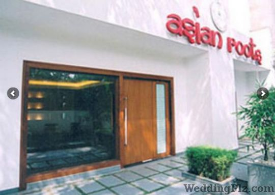 Asian roots spa new delhi